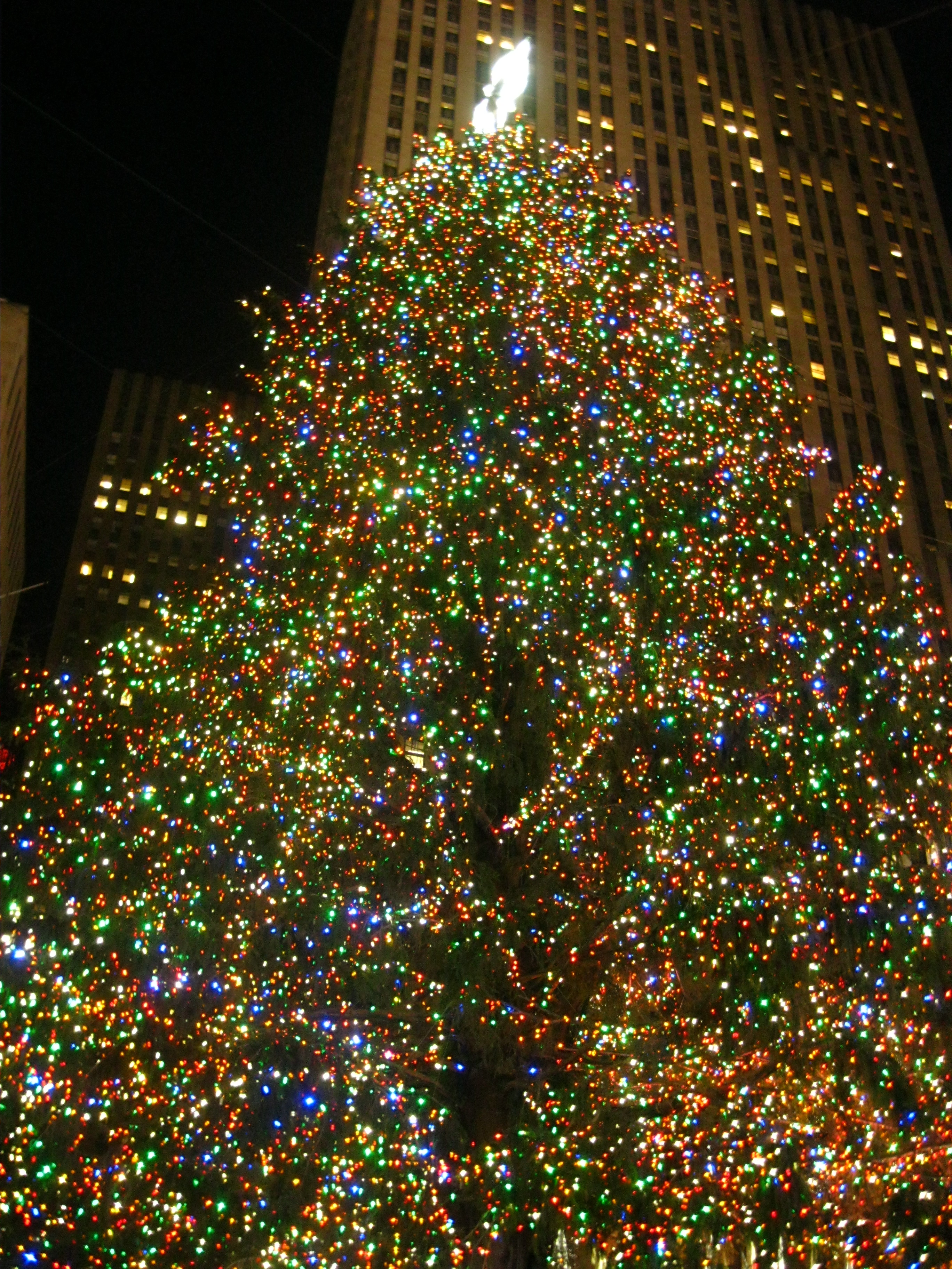 Christmas in New York City Part 2: extraordinary Christmas trees ...