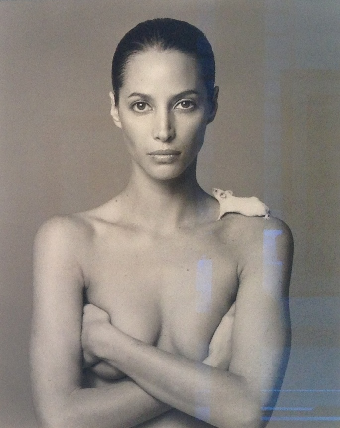 Christy Turlington Patrick Demarchelier
