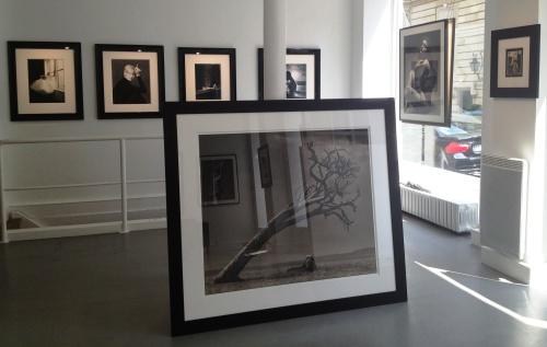 Patrick Demarchelier Galerie A inside