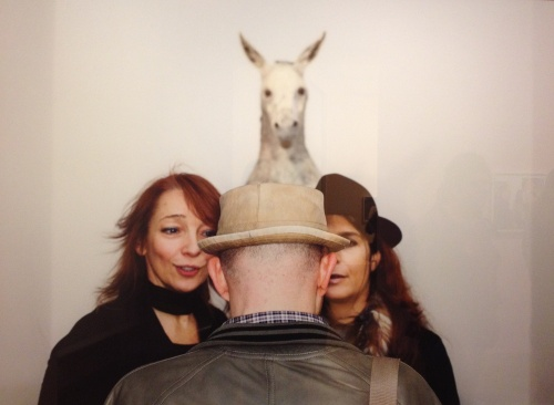 Martin Parr horse
