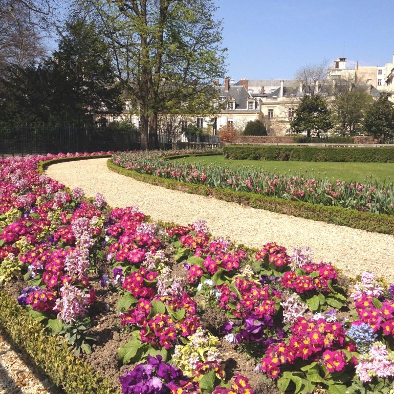Jardin du Luxembourg flowers 1