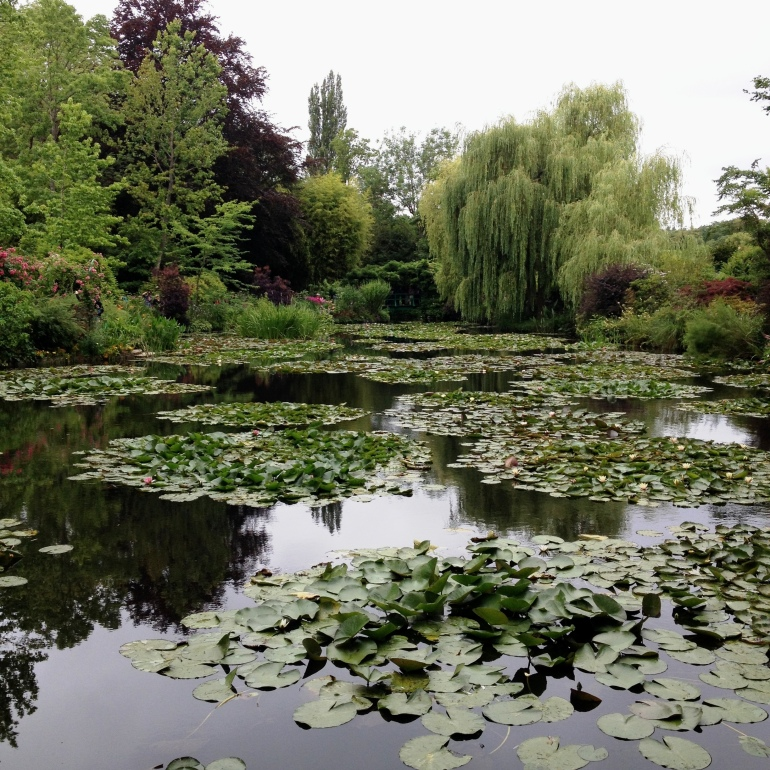 Giverny Claude Monet garden 17 water lily