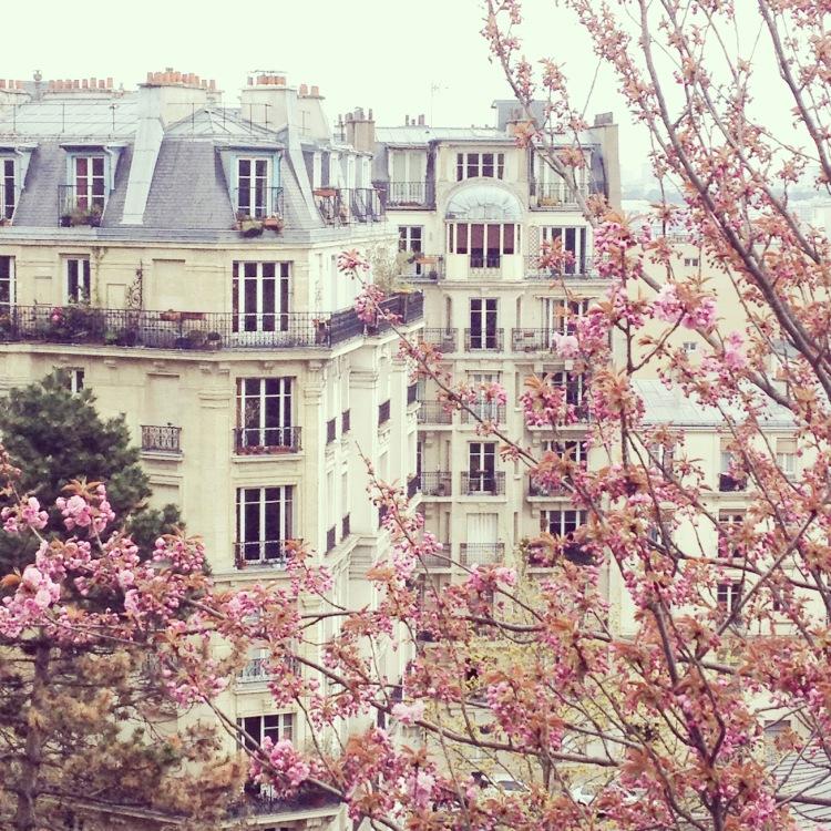 Montmartre blossoms