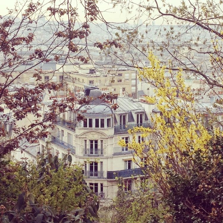 Montmartre Sacré Coeur park view